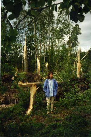 Annelies dotter Annika i den drabbade skogen strax intill riksväg 70.