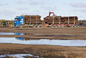 Inga timmerbilar kommer längre att rulla i Norrsundet.