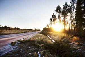 Bilden fotograferades förra söndagen i Strömsund när stormen Hilde hade dragit igenom länet.