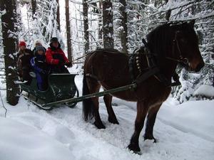 Populär marknadstur i släde genom ett Kälen i vinterskrud.