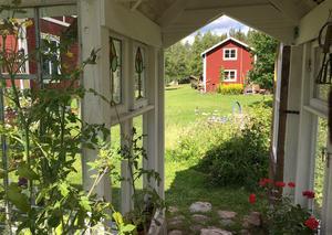 Utsikt från växthuset.