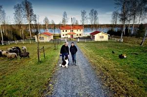 Förvandlat. För fem år sedan fanns här bara ogenomtränglig skog. Den andra januari 2007, när röjning och markarbeten var gjorda, kom långtradarna med hussektionerna. – Det var en häftig syn, säger Örjan Lindh, här tillsammans med makan Christine, hunden Theo och några av fåren och hönsen.
