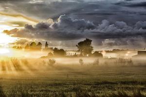 Kvällssolen skapar magi. De sista solstrålarna tränger sig genom kvällsdimman och skapar detta magiska scenario.