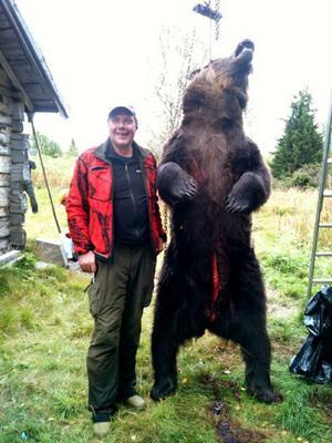 Älgjakten fick en annorlunda start för Rickard ´Fagerstrand. Han trodde att hunden hade fått korn på en älg – i stället var det en björn på 303 kilo.