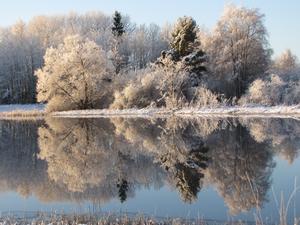 Den 8 dec. 2011 var en av få vackra vinterdagar.
