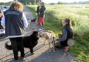 """Hundglädje. Moa Waern och hennes nya hund Kia, till höger i bild, deltog för första gången. Kia var mycket lugnare mot slutet av kvällen än i inledningen ochfick mycket beröm av Moa. Här hälsas det på Crazy, med matte Elisabeth """"Bettan"""" Holm."""