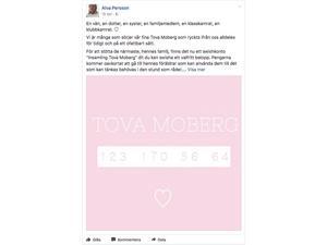 Alva Persson startade insamlingen i torsdags och har redan fått in ett flertal donationer.