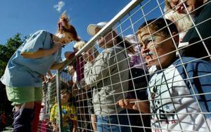 Kö blev det när Pippi skulle ge barnen autografer. Många hade också en eller annan fråga till den superstarka flickan.