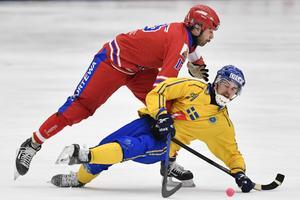 Ett av Martin Johanssons adelsmärken är det fysiska spelet. Här i en duell med Alan Dzhusoev under VM i Sandviken. Foto: Jonas Ekströmer / TT