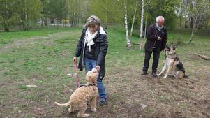 Hundägarna Christine Soläng och Anders Boman är överens om att det finns platser i Södra Bomhus som skulle passa bra till hundrastgårdar.