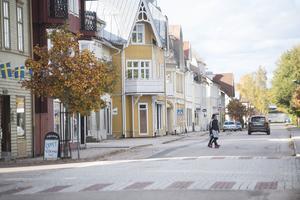 Vy från Vansbro. Foto: TT