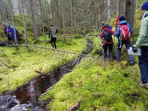 SPF Faluns vandringsgrupp på väg mot Sörskog. Foto: Mats Hiertner.