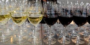 Flera festlokaler i Södertälje har sökt och fått permanenta alkoholtillstånd. Foto: Jessica Gow/TT