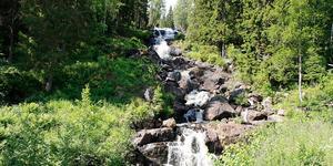 Västanåfallet. En pampig miljö från en pampig tid – klassiskt utflyktmål och naturreservat.