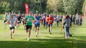 Så här såg det ut när en av sträckorna i Lasse-Majaloppet startade förra året. På söndag är det dags för tävlingens 47:e upplaga.
