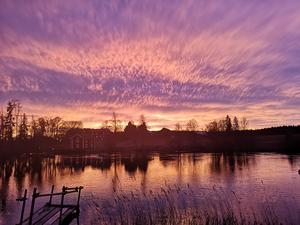 Månadens bild togs vid Sundbo. Foto: Rita Södergård