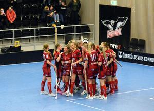 Slutsignalen har gått i Skyttis Arena och Örnsköldsvik jublar. Bild: Louay Shameh