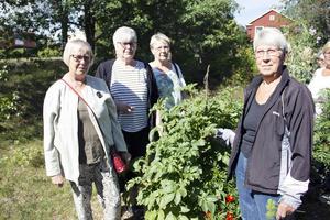 Elvy Ståhl, Lilly Jarl, Barbro Davik och Monika Mattsson har bott i Järbo under lång tid. De minns inte när det brann som det gjort under den senaste tiden.