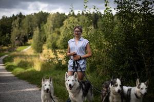 Charlie promenerar ofta och mycket med sina hundar. Favoritspåret är det som sträcker sig längst Vigelsjö.