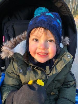 Ett vårtecken, tussilago och ett av mina fina barnbarn som lyser ikapp, Sigge 2 år. Foto: Mikaela Blomqvist.