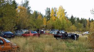Totalt har 63 (skrot-) bilar kunnat identifieras. Bild: Örnsköldsvik kommun.