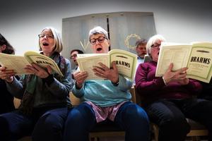 Sång med själ och hjärta – delar av domkyrkokören repeterar inför konserten nu på söndag.