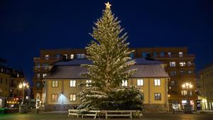 73 000 kronor kostade ljusslingorna till granen på Stora torget. Belysningen köptes in i år.