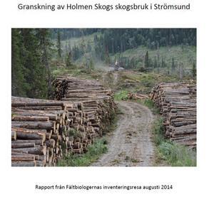 Holmen Skog avverkningsanmäler och avverkar skogar med höga naturvärden. Det slår nu Fältbiologernas skogsnätverk fast i en rapport från sommarens inventeringsresa i Jämtland.