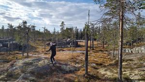 Elitorienterare, bland annat Joakim Svensk (bilden)  vill skapa orienteringsaktiviteter i Råndalen i Härjedalen. Foto: privat
