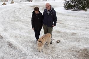 Marianne och Stefan Falk bor just nu, under måndagen, på Scandic Gävle Västra. Detta var det enda stället de kunde komma på som välkomnade även deras hund Felix.