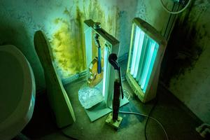 Två soliarer inne på en toalett duger bra när de nylackade fiolerna ska torkas. Foto: Berit Djuse