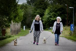 Systrarna Iréne Leth Jusjong och Yvonne Andersson tar en promenad med hundarna Jens och Mumsan. De var med och delade ut kläder som bygden samlat in till de asylsökande.