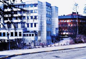 Bild: Ingvar Bergman