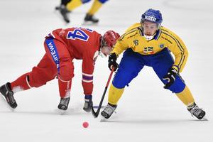 Erik Säfström under bandy-VM i Sandviken förra året. Foto: Jonas Ekströmer/TT