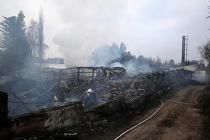 Brandkåren fick snabbt branden under kontroll och förhindrade ytterligare spridning till intilliggande växthus.