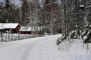 Vägar och väghållning där några få med Bergvik skog kör över en överväldigande majoritet i fäboden Björka och längs Siljan.