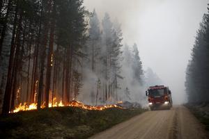 Fredrik Röjd, som deltog i bekämpningen av skogsbränderna i Hälsingland sommaren 2018 tycker att  gundproblemet är att hela totalförsvarstanken är borta.