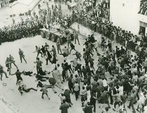Kravaller i Alger i filmen