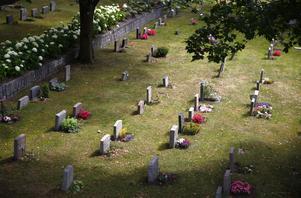 Gravstenar på Södertälje kyrkogård.