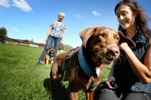 – Kontakt, glädje och samarbete med sin hund är det viktigaste, säger Maria Jarosinski.