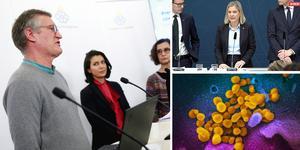 Anders Tegnell, Folkhälsomyndigheten,  Taha Alexandersson, Socialstyrelsen, och Anneli Bergholm Söder, MSB.