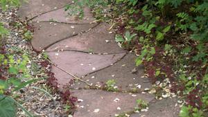 Betongplattorna i trädgårdsgången har konsthantverkaren Sam Stigsson gjort.