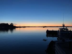 Nattdyk från brygga på Fejan. Foto: Margit Vättö Folkesson