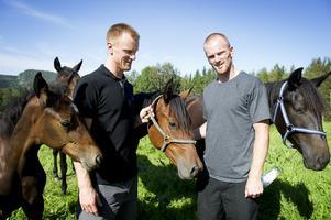 Henrik och Daniel Sedin äger Tangen Haap som skrällvann Elitkampen. Foto: Maria Edstrand (bilden är från 2012)