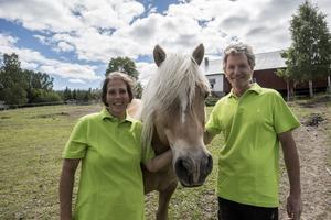 Jolanda och Marcel Schmeitz tillsammans med en av Mosjö Stalls åtta hästar, haflingerhingsten Waron.