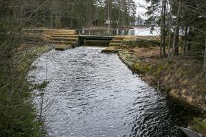 En del av de konstruktioner som finns kring dammarna ska vara kvar som kulturminnen.
