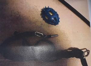 Foto: polisen. Två tunga järnkättingar var fastsatta runt Marleys hals.