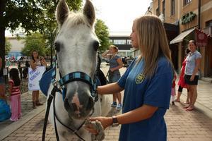 Ponnyridningen var populär. Hanna Wiksten ledde hästen Surprise.