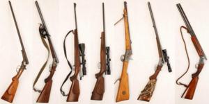 I väskan låg sju vapen: tre kulgevär, två hagelgevär och två kombinationsgevär. Bild: Polisen