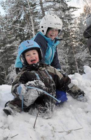 Edvin Bergvind Linder och Adam Westlin på väg nedför kullen i pulkabacken.